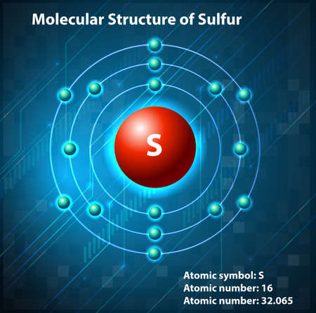 Molecular structure on the element Vector