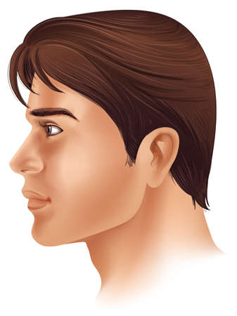 partes del cuerpo humano: Ilustración que muestra una vista lateral de la cara de un hombre Vectores