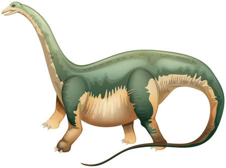 Illustration of an Apatosaurus Vector