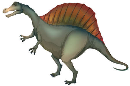 Illustration of a Spinosaurus Vector