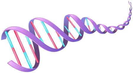 adn humano: Ilustración del ácido desoxirribonucleico