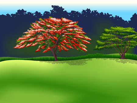 Illustration of the trees Vector