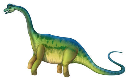Illustration of a Brachiosaurus Vector