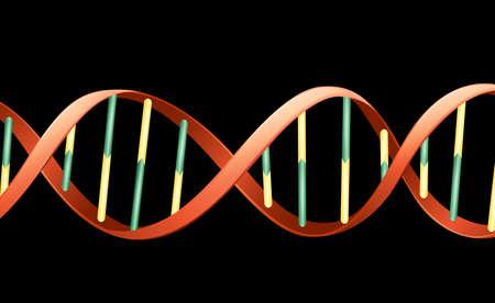 Ilustración del ácido desoxirribonucleico humana