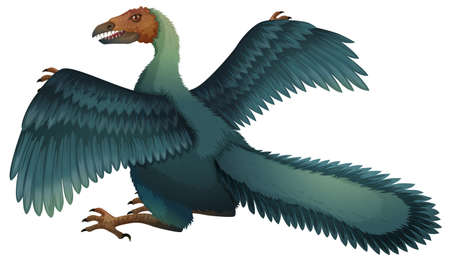 Illustration of a Archaeopteryx Vector