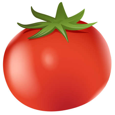 indeterminate: Illustration of a big ripe tomato