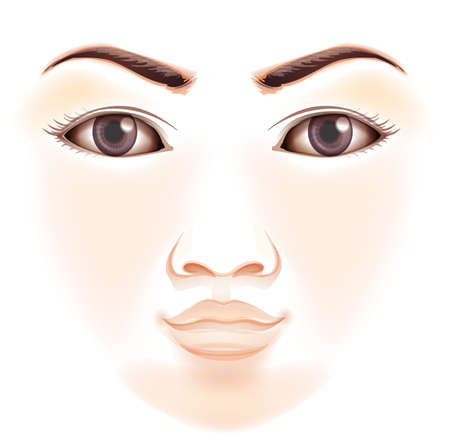 features: Illustration of the features of a human face