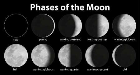 Ilustraci?e las fases de la luna Ilustración de vector