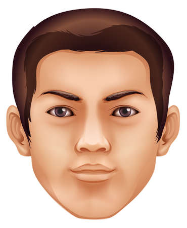 Illustration of a human face feature Vector