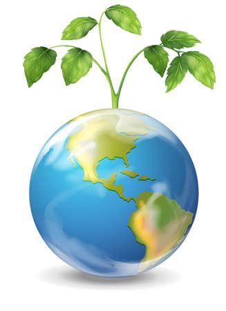 Illustration of the earth Illustration