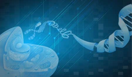 guanine: Illustration of the DNA Illustration