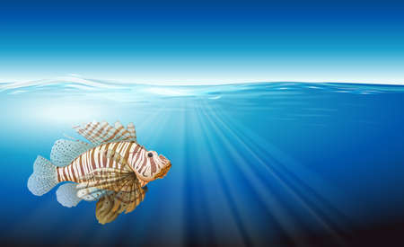 Illustration showing the lionfish Vector