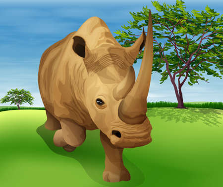 Illustration showing the Rhinoceros Stock Vector - 20774798