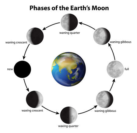 phases: Illustration showing the phases of the Moon Illustration