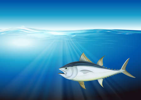 density: Illustration of the tuna