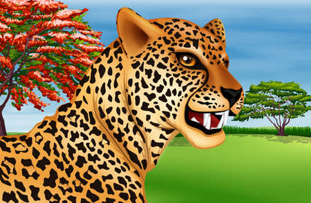 coloration: Illustration showing the cheetah