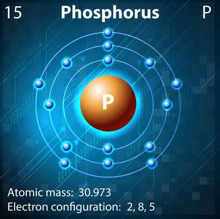 electron shell: Illustration of the element Phosphorus Illustration