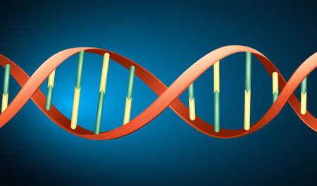 デオキシリボ核酸のイラスト 写真素材 - 22385925
