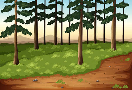Illustration of the pine trees Vector