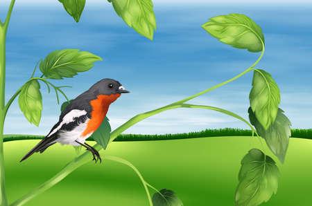 Illustration showing the bird Stock Vector - 22385934