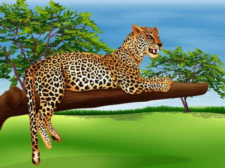 panthera: Illustrazione che mostra un leopardo che giace sopra il ramo di un albero