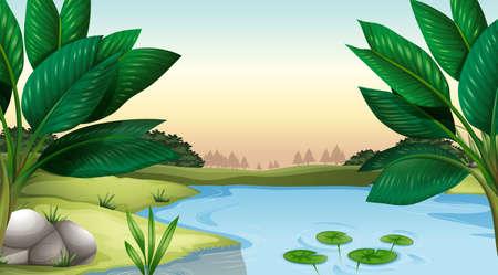lily leaf: Illustration of a pond Illustration