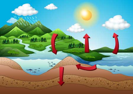 Illustrazione del ciclo dell'acqua Archivio Fotografico - 23261278