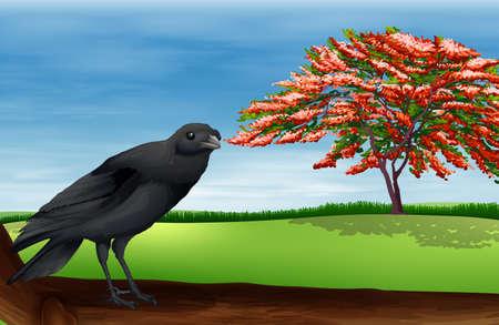mobbing: Illustration of a bird Illustration