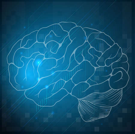 centralized: Illustration of a sketch of a human brain Illustration
