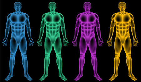 Illustration of the coloured male bodies Vector
