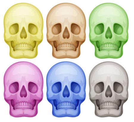 白地にカラフルな頭蓋骨のイラスト