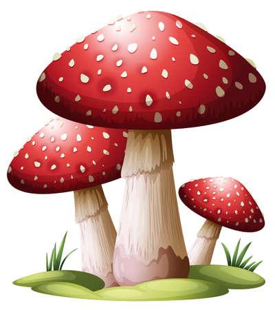 Illustratie van een rode paddestoel op een witte achtergrond
