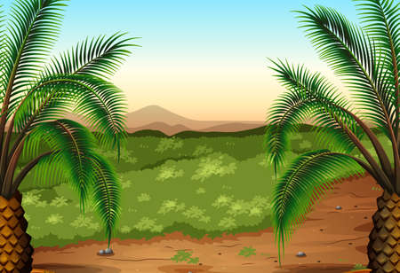 perennial: Illustration of the palm plants and grass