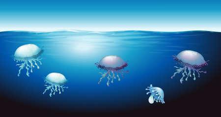 locomotion: Illustration of the jellies Illustration