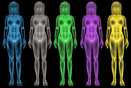 Illustration of the female coloured bodies Vector