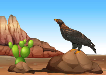 wedgetailed: Illustration of an eagle