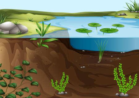recurso: Ilustração de um ecossistema lagoa