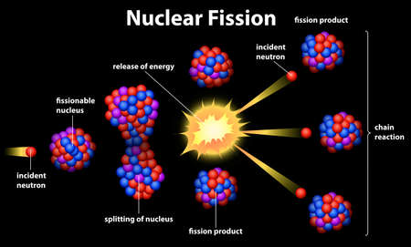 Illustration showing a nuclear fission Vector