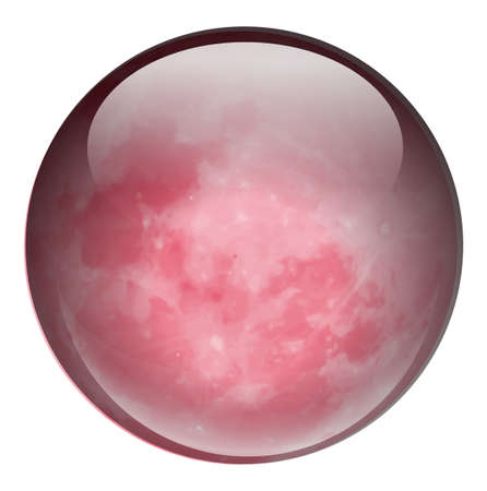 hardwearing: Illustration of a red ball on a white background