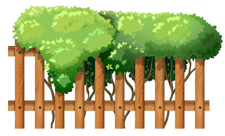 Illustration of a wooden fence with green plants on a white background