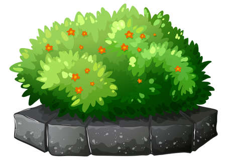 flowerpots: Illustration of a flowering plant above the gray stone on a white background Illustration