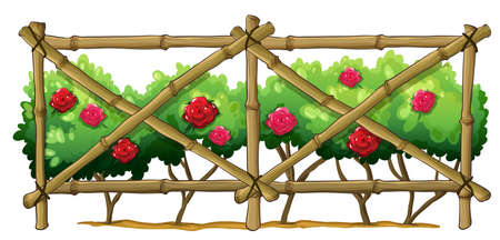 Illustration of a bamboo fence with flowering plants on a white background