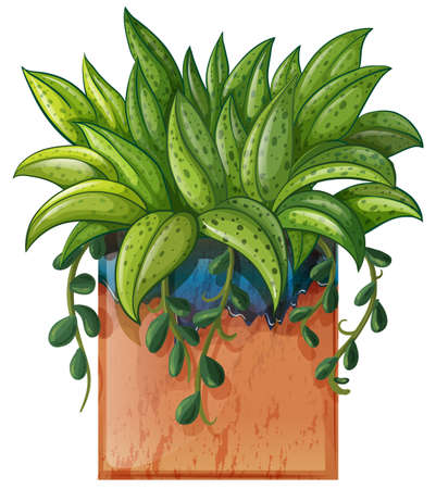 Illustration of a potted plant on a white background