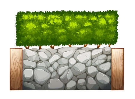 boundaries: Illustration of a stonewall with plants on a white background