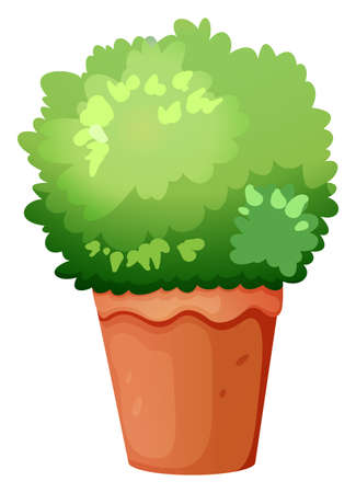 Illustration of a green potted plant on a white background