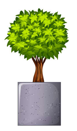 elongated: Illustration of a green plant and the concrete gray pot on a white background