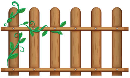 Illustration of a wooden fence with vine plants on a white background Illustration