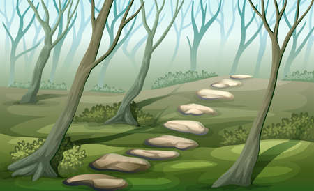misty forest: Illustration of a misty forest