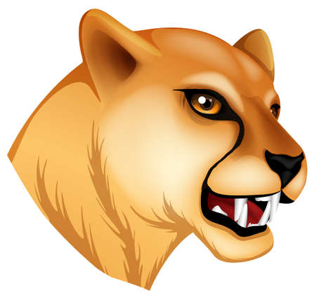 chordata: Illustration of a head of a panther on a white background
