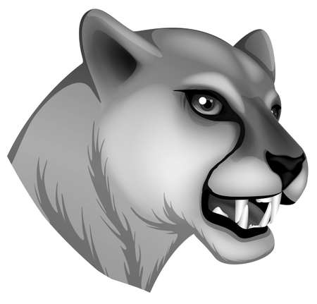 Illustration of a grey panther on a white background Illustration